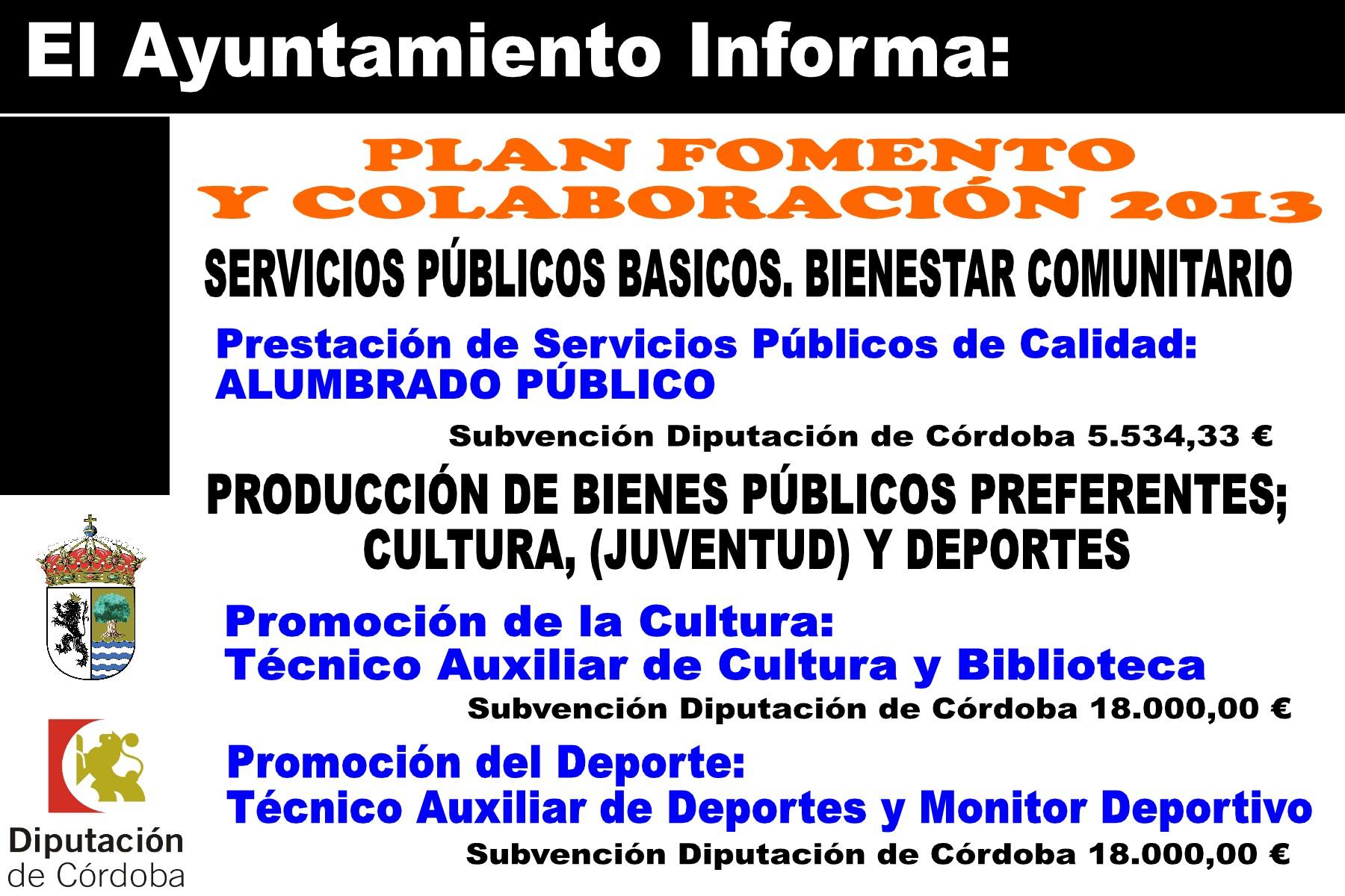 SUBVENCIONES RECIBIDAS 2013 2