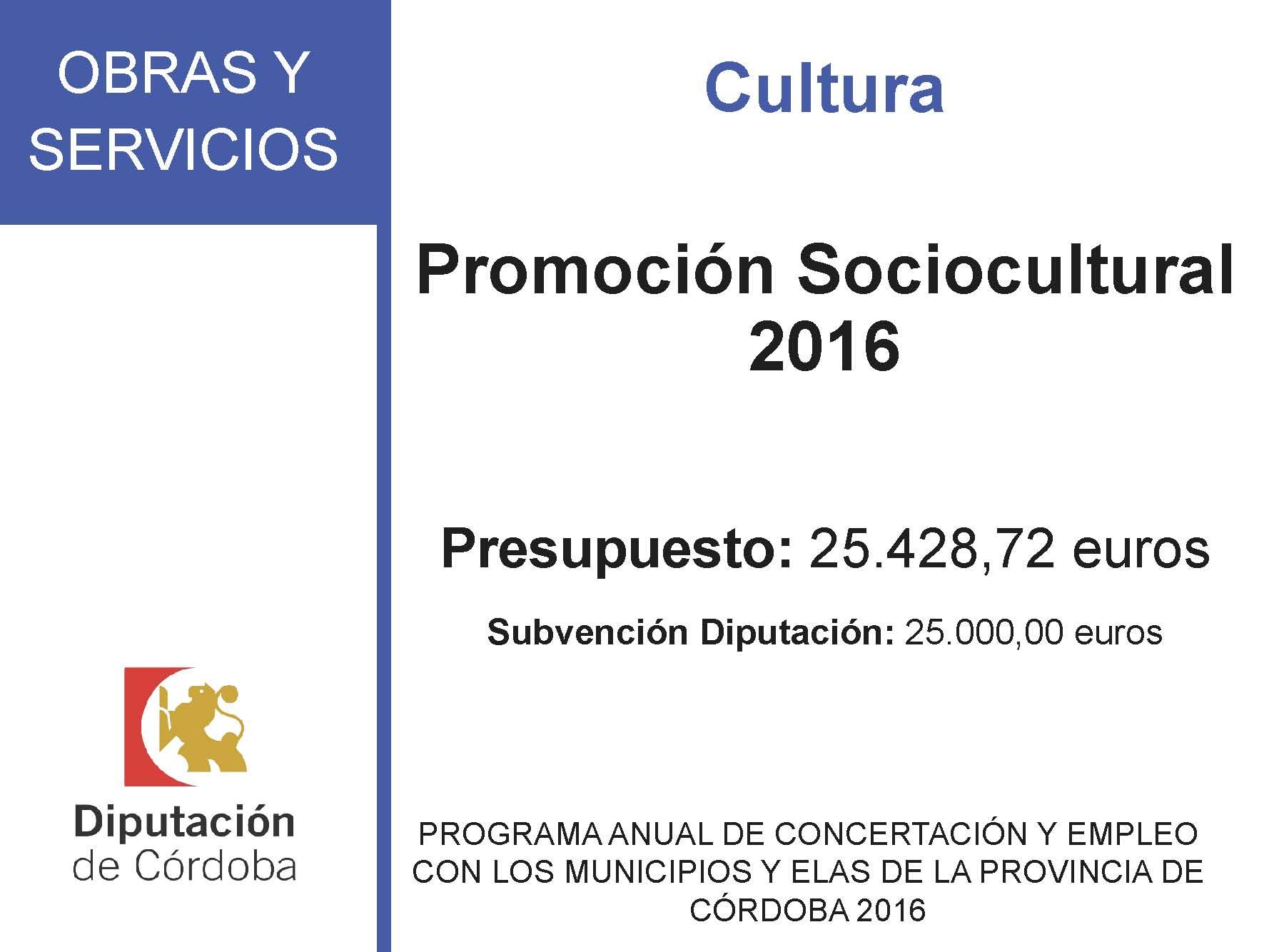 SUBVENCIONES RECIBIDAS. 2016 29