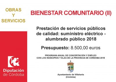 SUBVENCIÓN RECIBIDAS DE DIPUTACIÓN DE CÓRDOBA 9